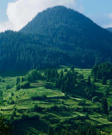 balkans: Rhodopi mountains, Bulgaria, Balkans