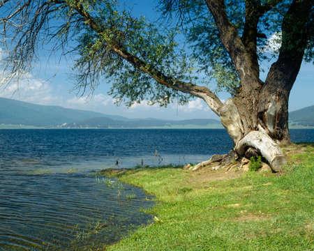 balkans: Batak lake in Rhodopi mountain, Bulgaria, Balkans, European, waterscape, Europe, EU