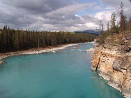 pine creek: Athabasca Creek in Jasper National Park