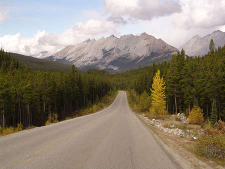 national parks: lonely road in Canadas National Parks