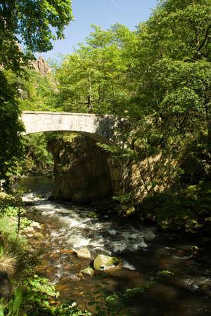 bode: Bode Valley The Valley Bridgestone Bridge Stock Photo