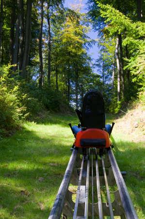 toboga: Pista di slittino estivo nella foresta