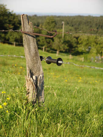 power cord: fence Electricity Power Cord