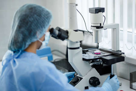Cell culture laboratory. Cell-based products quality control. A biologists work place. Stock Photo