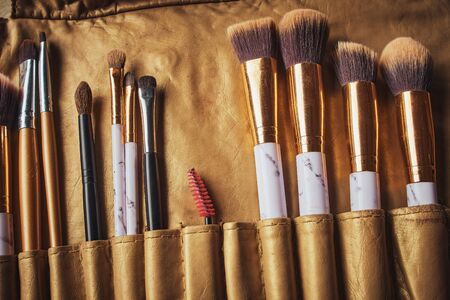 Makeup brushes set in case. Many different makeup brushes.