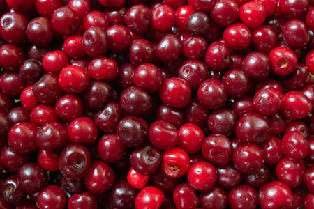 Fresh cherry berries as a background.