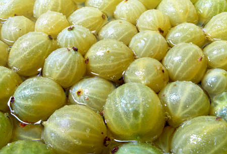 the process of making jam from gooseberries covered with sugar