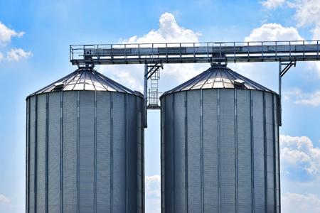 Grain tanks in the corn field closeup