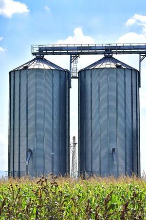 Grain tanks in the corn field