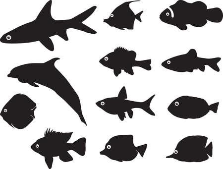 sockeye: Fish silhouettes illustrated on white