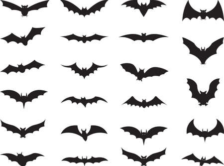 Bats collection isolated on white Çizim