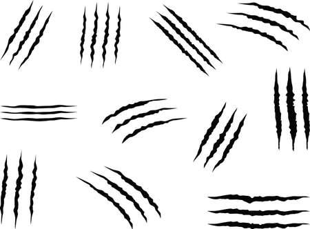 Jeu de griffes d'animaux illustré sur blanc