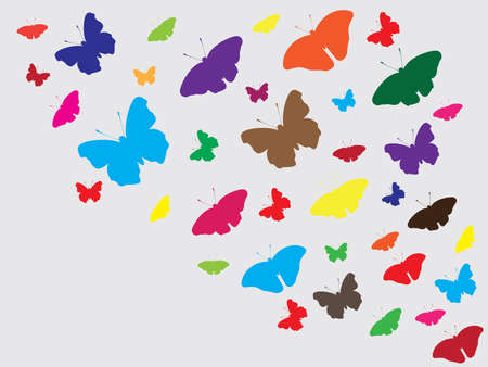 butterflies flying: Beautiful butterflies flying around background