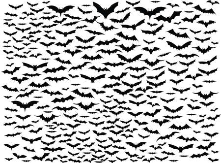 nocturne: Simple background of bats flying around