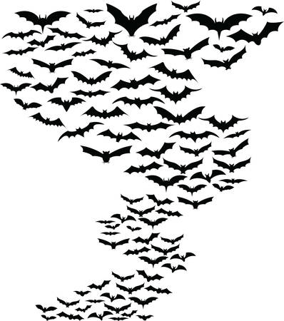 bat animal: Bats flying around simple background