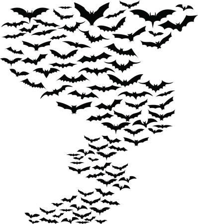 bate: Murciélagos volando alrededor de fondo simple