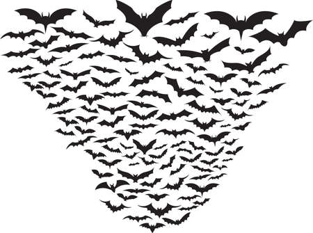 nocturne: Set of bats flying isolated on white