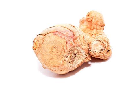 planta con raiz: raíz de la planta blanco condimento para la comida fresca