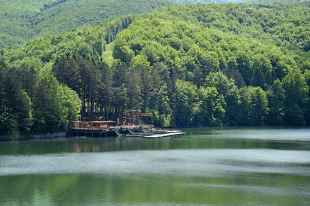 Beautiful wood lake resort near green forest