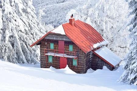 Mountain wooden cabin near trees full of snow Reklamní fotografie