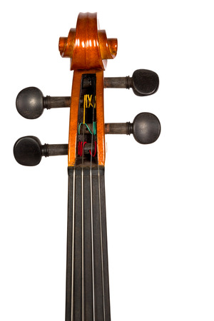 Classic violin head stock and tuning pegs brown color isolated on white background