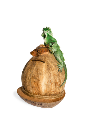 thrift box: Souvenir green lizard on a coconut piggy bank isolated on white background Stock Photo