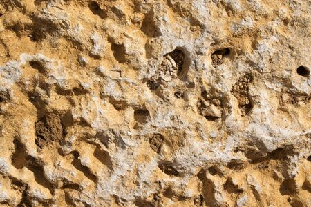 holey: Texture closeup of an old holey dirty yellow sandstone Stock Photo
