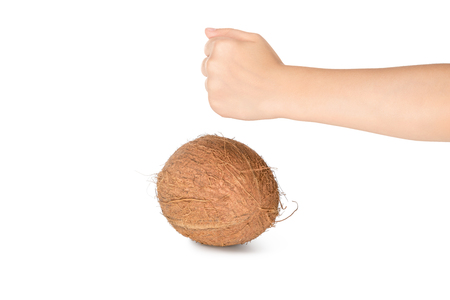 Hand clenched in a fist breaks a ripe coconut isolated on white background
