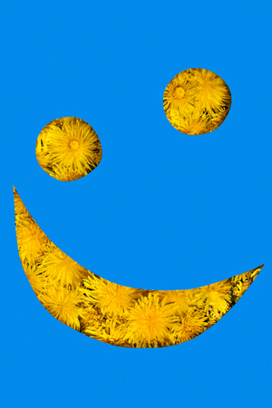 Yellow dandelions through the smiley faceplate with a smirk on one side