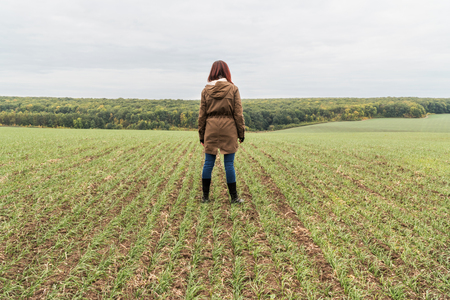 agronomist: Agronomist on the field with winter wheat in autumn, rear view