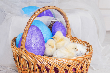 Easter chickens and toy eggs in a large wicker basket 免版税图像