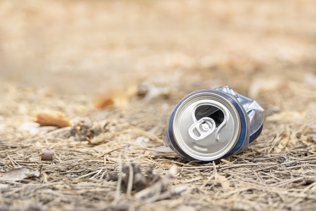 pollution of nature - crushed metal can of beer on the needles in the forest