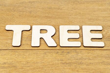 Word - tree, laid out in wooden letters on an old wooden table Stok Fotoğraf