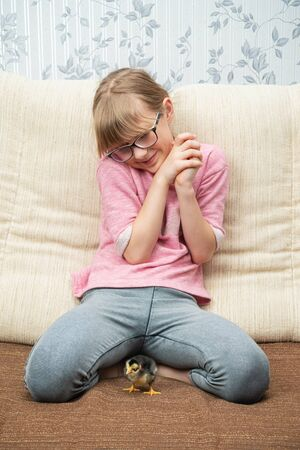 girl sits on the couch and lovingly looks at the little chicken standing next to Standard-Bild