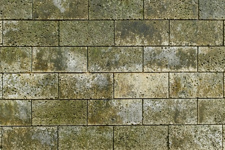 The texture of stone walls. Moss brick texture. Banco de Imagens