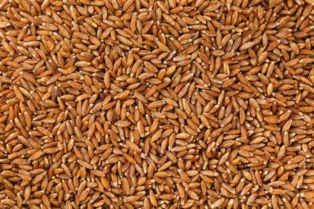 Jasmine brown rice closeup. Organic grain texture