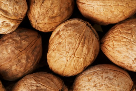 Natural walnut background pattern texture Abstract walnuts heap pattern background Blurred edges frame Natural food in-shell nuts walnuts pattern backdrop Walnuts in shell background dramatic contrast.