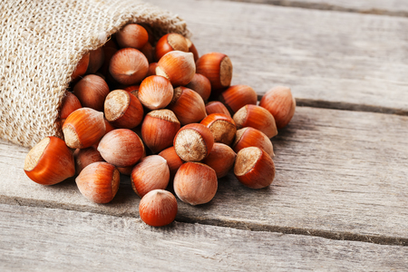Hazelnuts in a cover, poured out from a bag from burlap on a gray wooden table. Organic New Received. In healthy vegetarian super food Standard-Bild