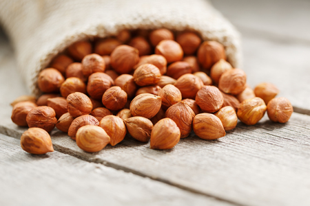 Chiselled hazelnuts in a bag of burlap on a gray wooden table. Organic Fresh Harvested. Without shell healthy vegetarian super food.