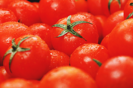 Lots of fresh ripe tomatoes with drops of dew. Close-up background with texture of red hearts with green tails. Fresh cherry tomatoes with green leaves. Background red tomatoes. Group of juicy ripe fruit. Standard-Bild