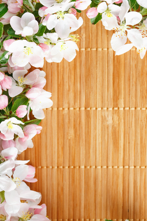 Frame of spring flowers of sakura on bamboo background. Beautiful cherry blossom sakura in springtime. View from above