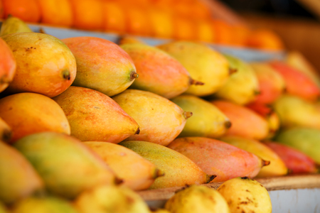 Rows of ripe mangoes in close-up yellow-red color, lie on the market stall. India Goa