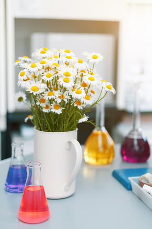 A large vase with daisies in the chemical laboratory, flasks with colored liquids standing on the table. Festive day, the day of the chemist, the holiday of people of workers of chemical industry