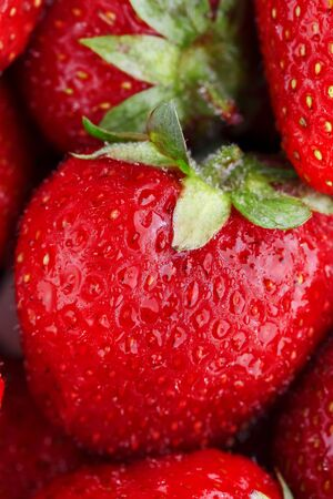 Juicy, ripe natural red strawberries without GMO. Strawberry - full frame. Close-up. Macro