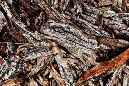 Chips of tree bark on the ground. Sawmill. Ecological background. Full screen closeup
