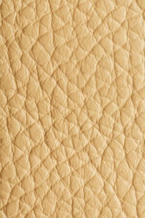 Textured beige leather closeup. Full frame, close up. MacroTexture of Genuine Leather cream color, background, surface.