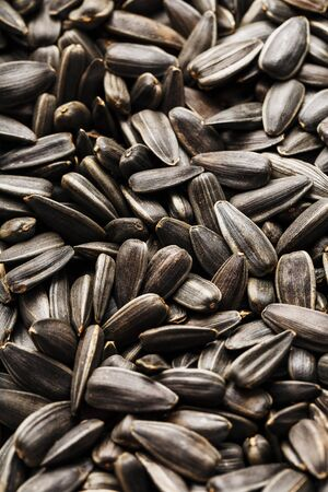 Seeds in a black shell as a background and texture, high detail. In full screen. Close-up