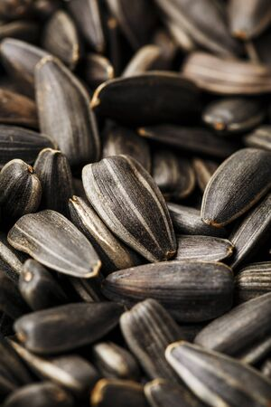 Seeds in a black shell are a bunch on a white background. In full screen. Isolate Stok Fotoğraf