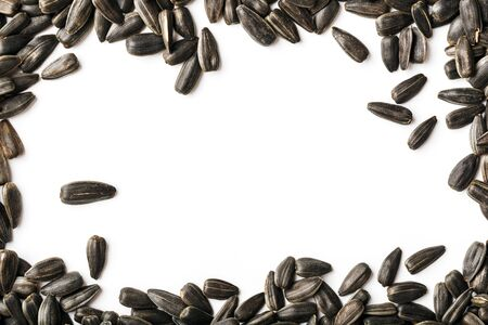 Seeds in a black shell - in the form of a frame a white background in the center, free space. In full screen. Free space for text, isolate