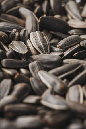 Sunflower seeds in the shell, Soft contrast. Texture, high detail. In full screen. Close-up.